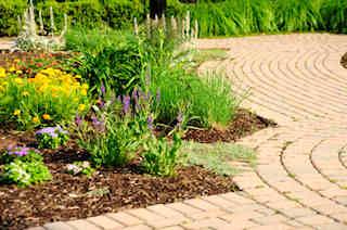 garden paver walkway
